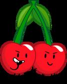 Cherries2017Pose