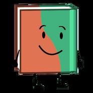 Mai book
