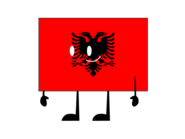 Flag Survivor Albania