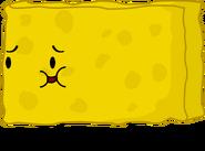 New Spongy Pose