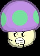 Toxic Mushroom BC