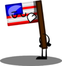 American Flag Pose