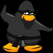 Ninja Old Header