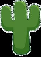 Cactusoldbod