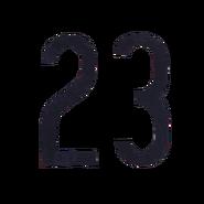 23BODY