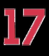 17 Body