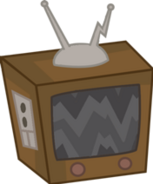 Assets-Television