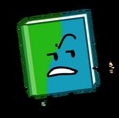 Book bfb 4