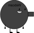 Camera Idle