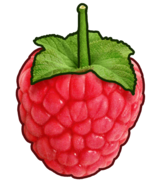 Raspberry's BFTW Body