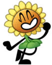 Sunflower Iz