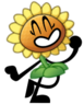 Sunflower Iz