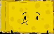 Spongy Pose OU