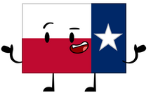 Texas Flag Pose