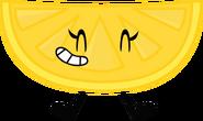 Lemon Slice Pose