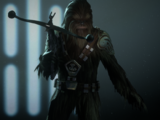 Wookiee Warrior/DICE