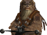 Wookiee Warrior/Original