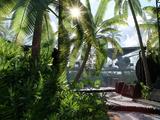 Scarif Jungle