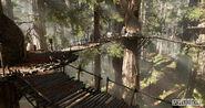 Andrew-hamilton-forest-01-04