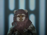 Ewok Hunter