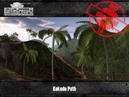 4207-Kokoda Path 2