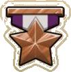 Medal bronze