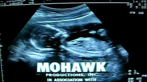 Job Site Productions Mohawk Productions Warner Bros. Television