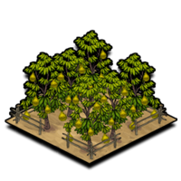 Orchard durian icon