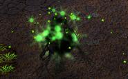 Nightvol-killed