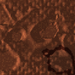 Marswars shell