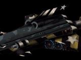 Striker (NSDF)