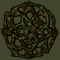 STCanyons shell.png
