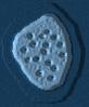 Europa (Deathmatch Map)