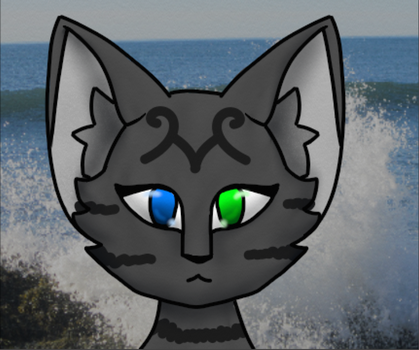 Wavecrash Adventures In Bayclan Wiki Fandom Powered By