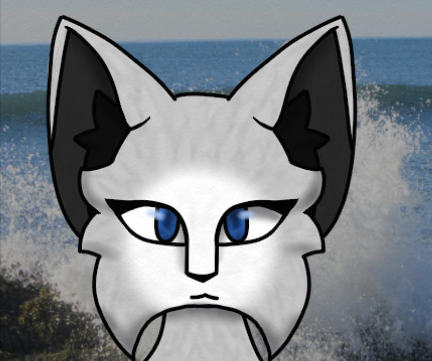 Moonstar Adventures In Bayclan Wiki Fandom