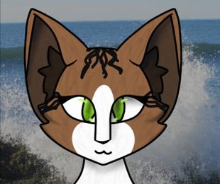 Sealstar Adventures In Bayclan Wiki Fandom Powered By