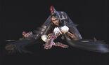 Bayonetta.(Character).full.775711