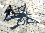 Madama Butterfly Shadow