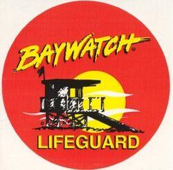1-red-baywatch-shorts-and-1-yellow-baywatch-t-shirt-4720-p