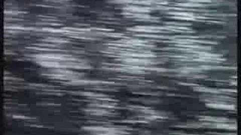 Baywatch intro season 5