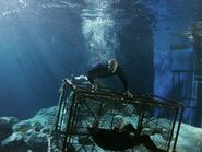 Dwayne Johnson onset underwater