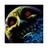 Blaze fire12's avatar