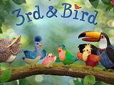 3rd & Bird
