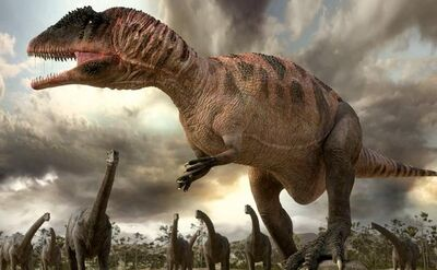 Carcharodontosaurus 1