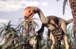 Gigantoraptor1