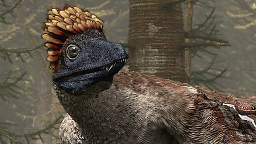 File:Microraptor.jpg