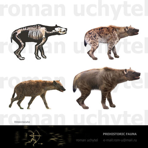 File:Cave Hyenas.jpg