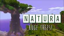 Grid Natura