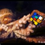Tom Marvolo Octopus