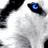 Tarkastio's avatar